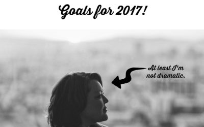 An Honest Look at 2016 and Personal Goals for 2017!